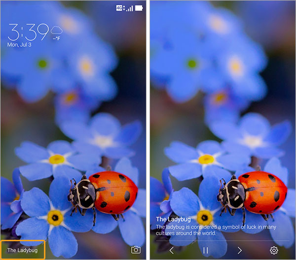 Ajouter photo wallpaper zenfone